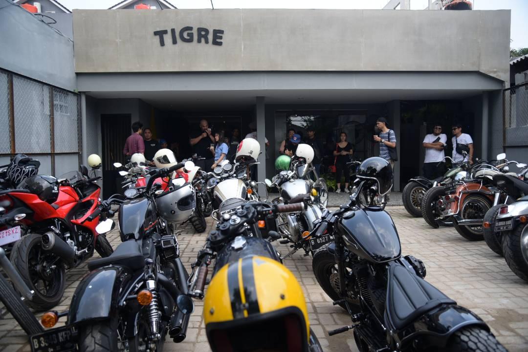 Tigre, Street Wear Store