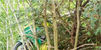 Motor balap tersangkut di pohon