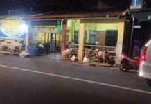 Showroom Motor Bekas Ujay